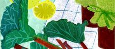 Säsongsbloggen guidar till maten som är bäst just nu